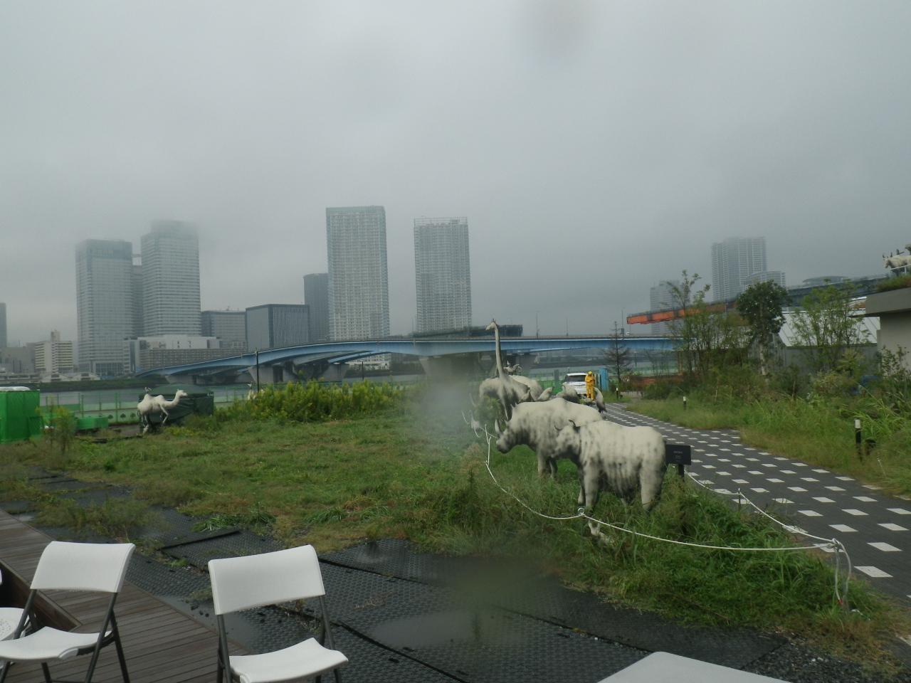 草刈前のマギーズ東京