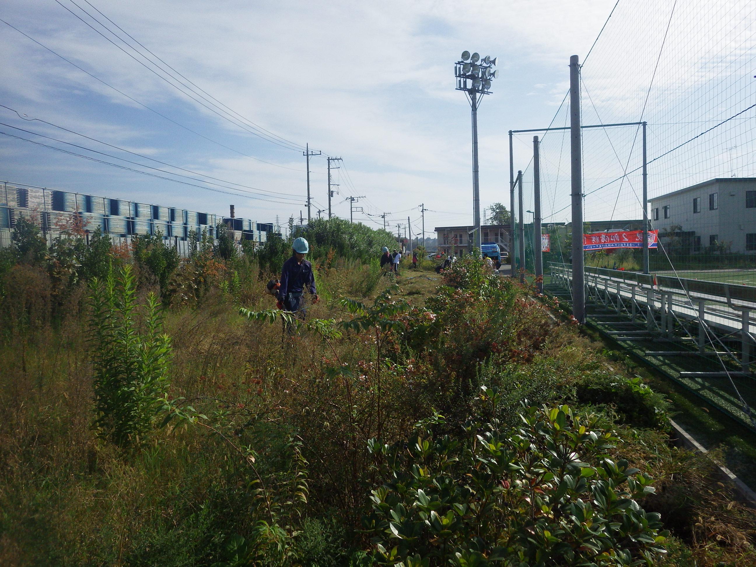 若手飯田黒須草刈り風景