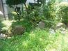 相模原の庭