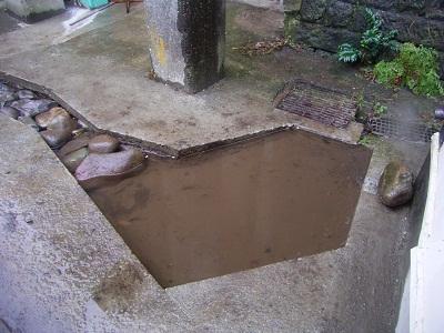 横浜市立白幡小学校にビオトープ池ができました!